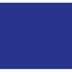 picto-brain